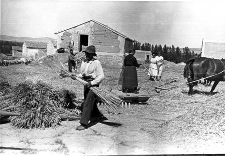 Fotograf a antigua la fototeca popular del jiloca for Herramientas de campo